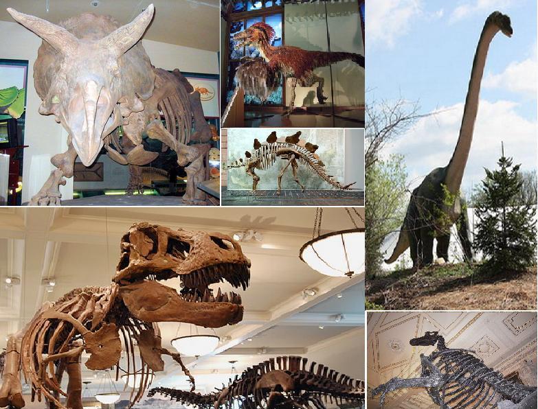 [صورة مرفقة: Dinosaurs-all.jpg]