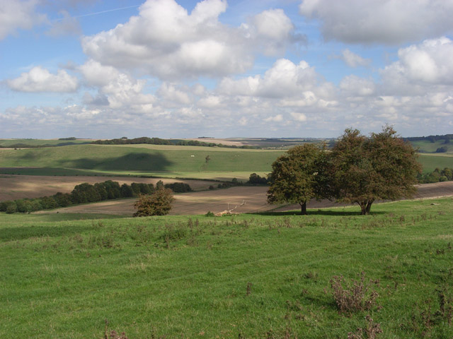 Downland, Upper Upham - geograph.org.uk - 248620
