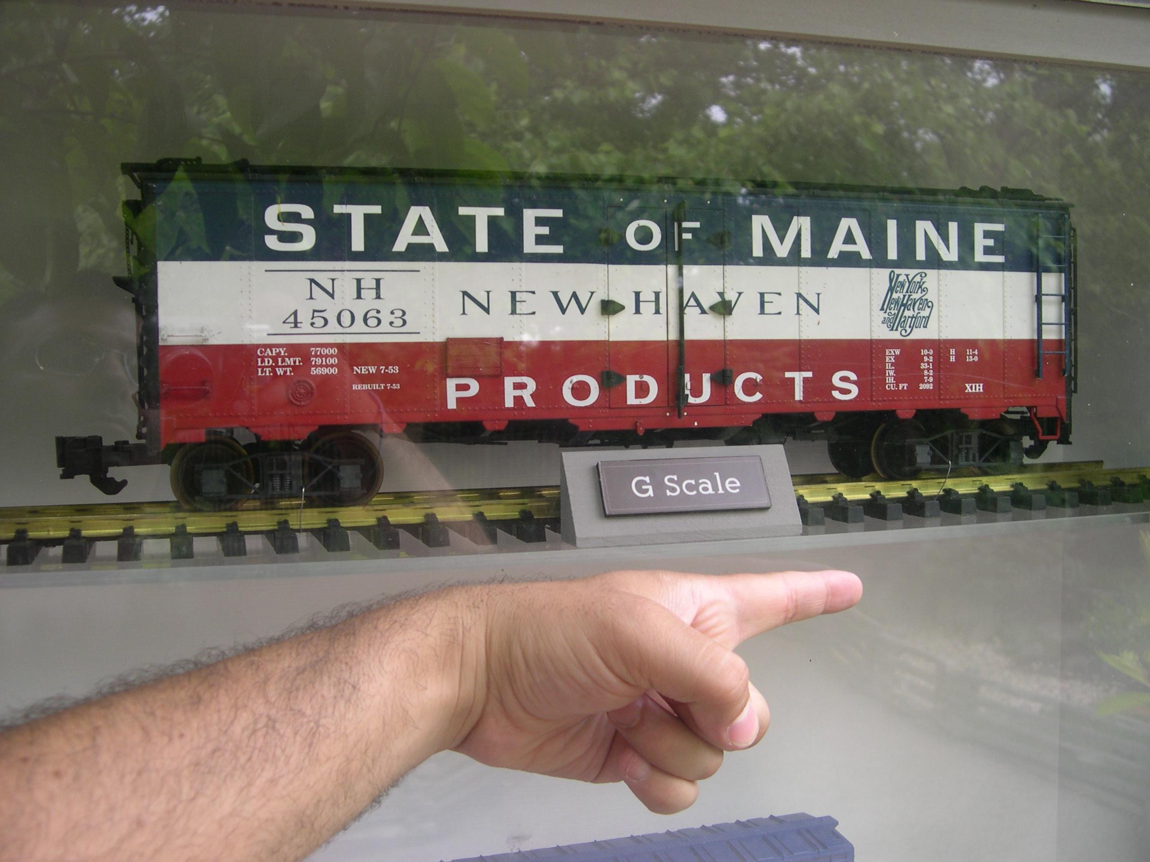 G scale garden railroad