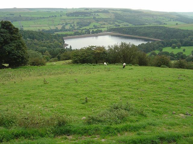 Hillside above Agden Reservoir - geograph.org.uk - 980104