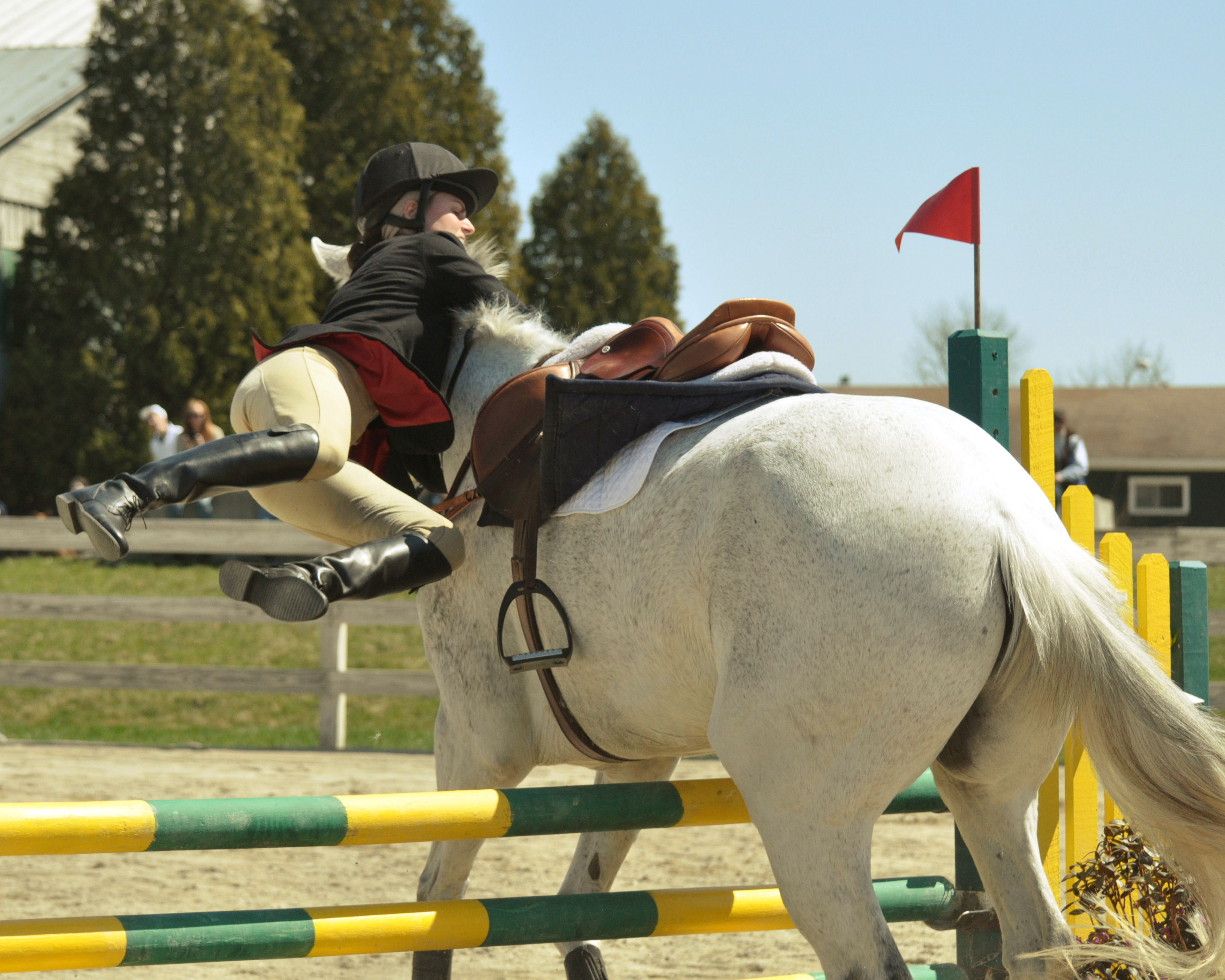 File Horse Jumping Almost Jpg Wikimedia Commons