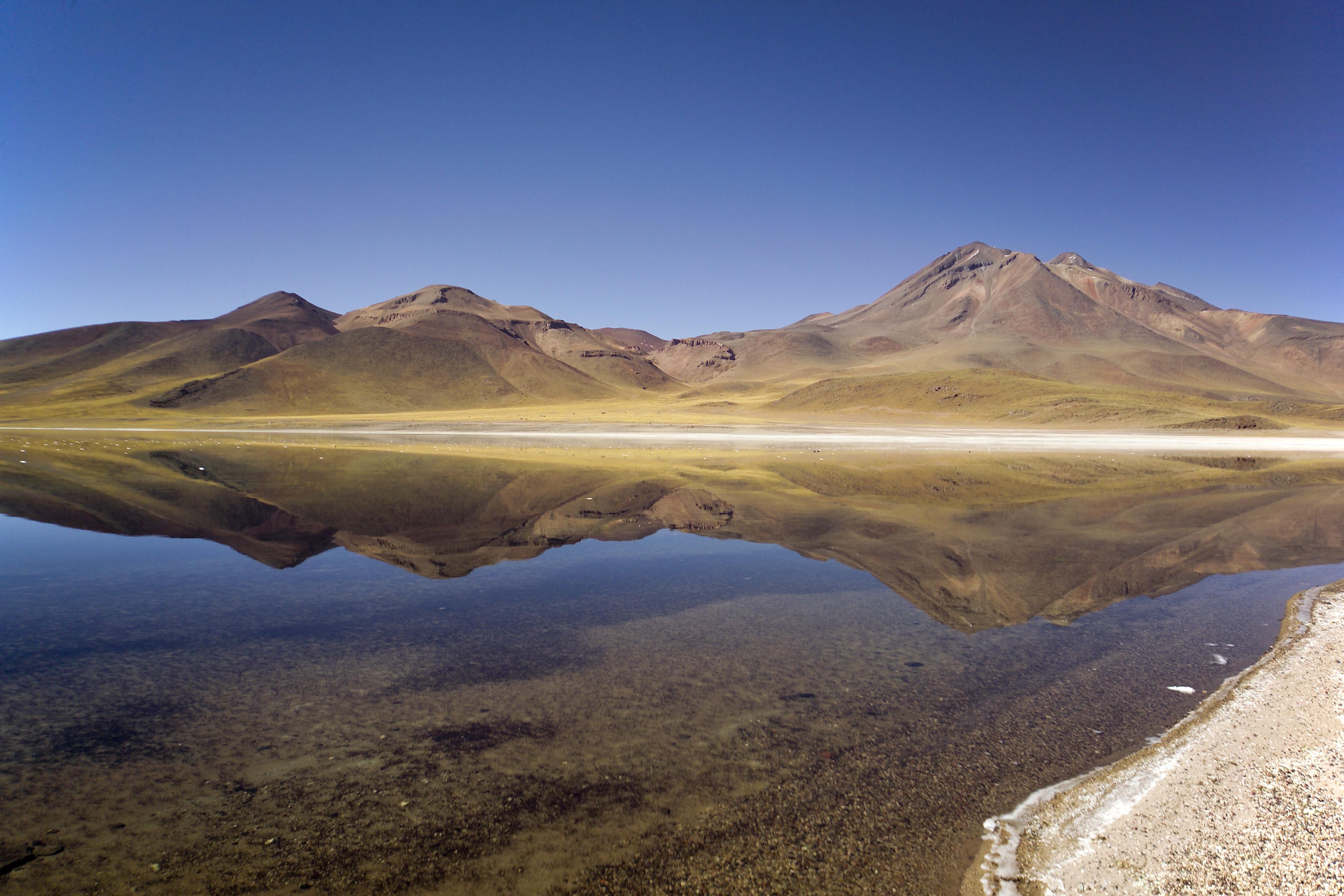 Antofagasta Chile  City new picture : Description Laguna Miscanti Antofagasta, Chile 03