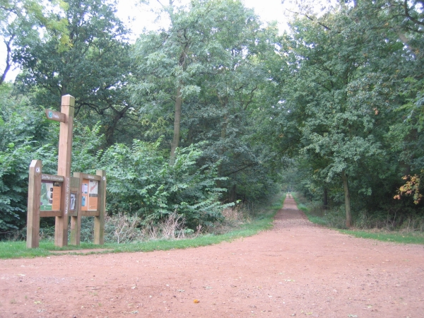 Maulden Wood, Beds - geograph.org.uk - 64552