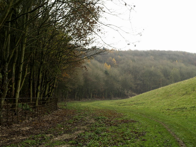 File:Oxlands Dale Footpath - geograph.org.uk - 617108.jpg