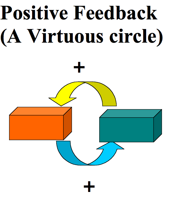 what is positive feedback