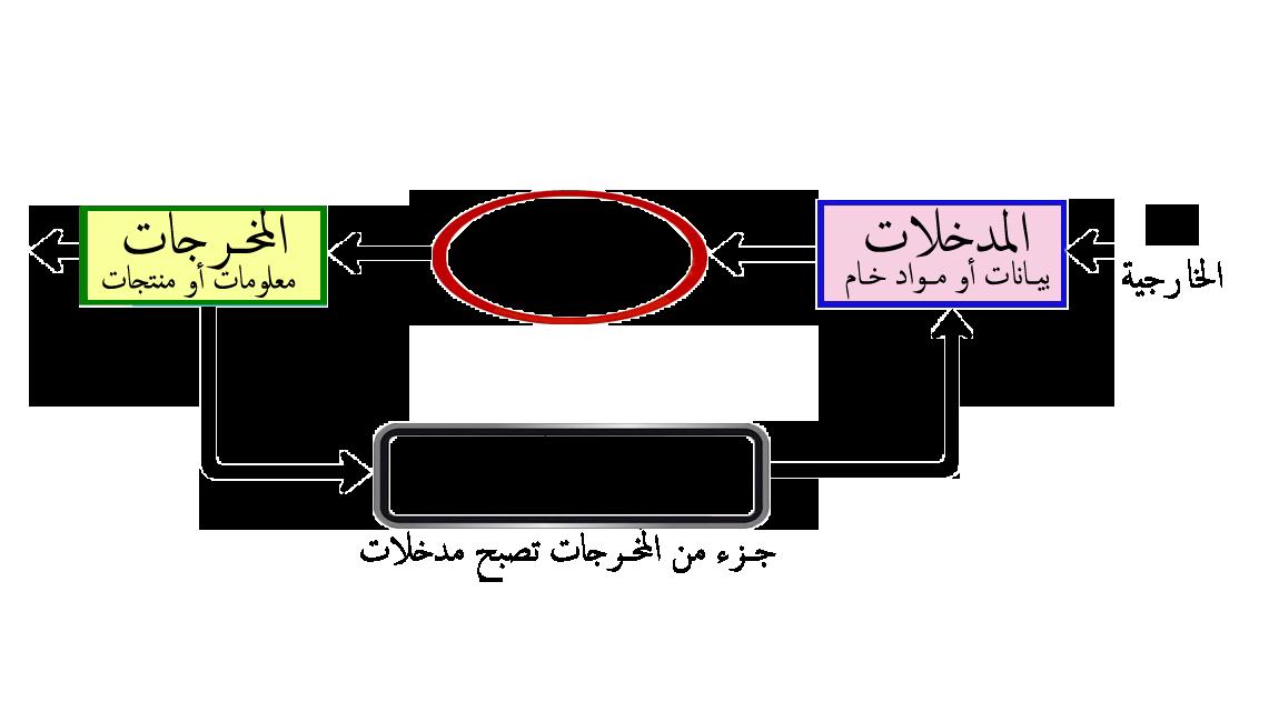 نظم معلومات ادارية pdf