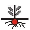 Symbol Kryptophyt.jpg