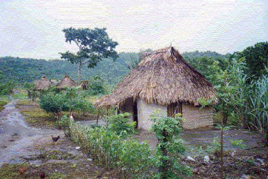File:Tipical houses North Honduras.jpg