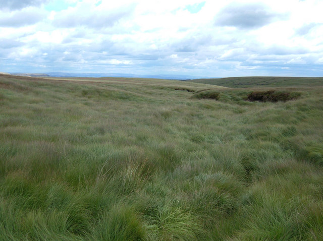 Wilding Fields, Darwen Moor - geograph.org.uk - 217635