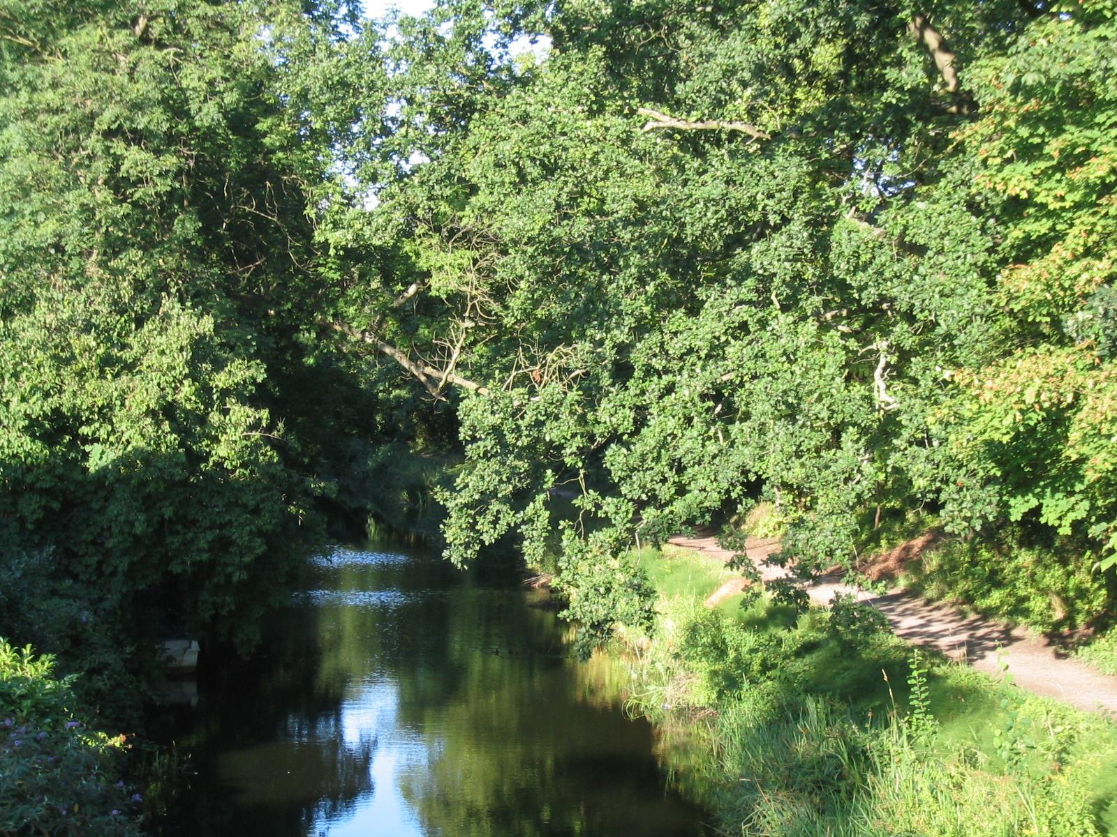 Surrey Canal Walk Lamppost Shoe