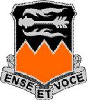 141 Signal Battalion DUI
