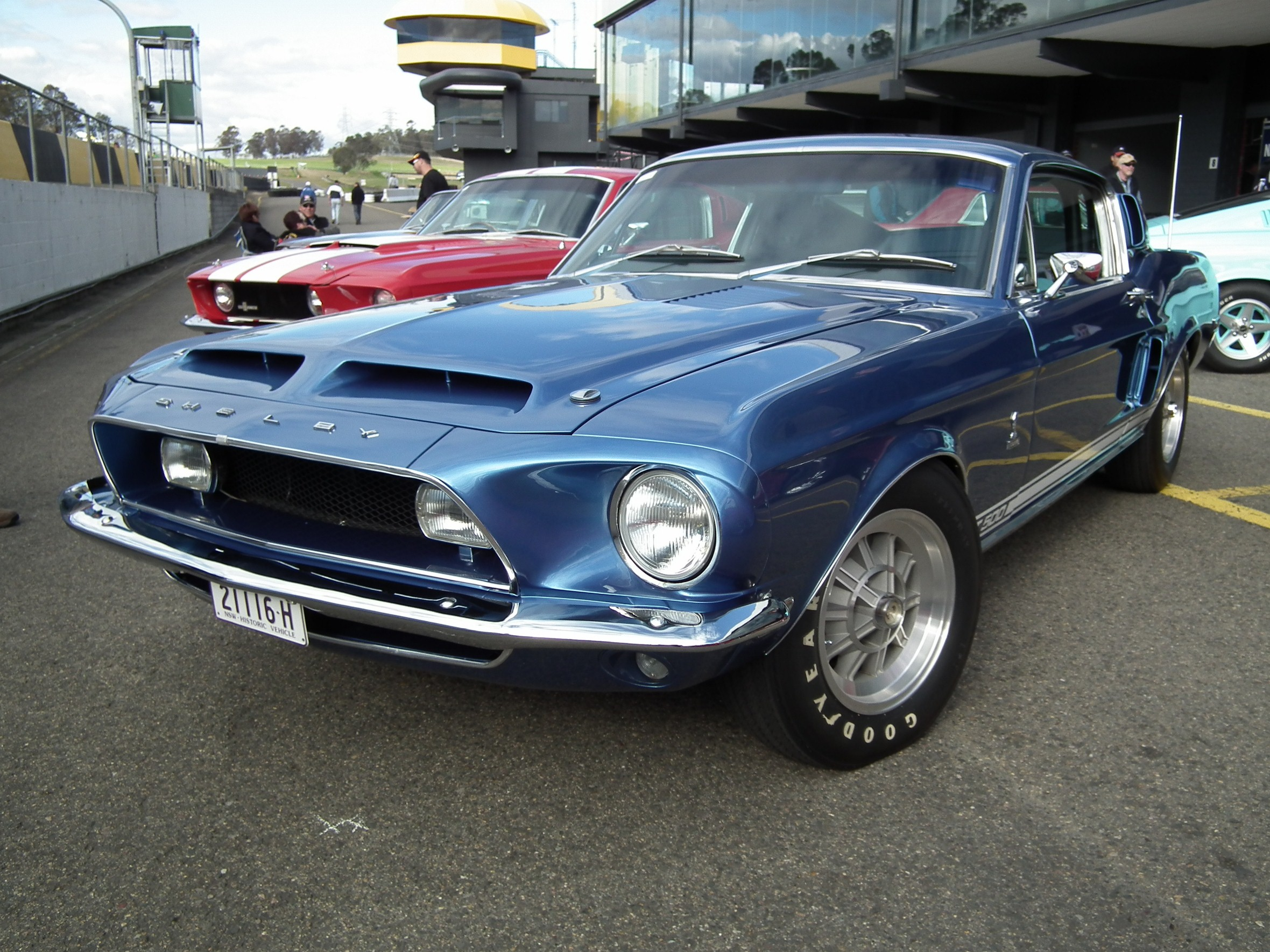 File:1968 Ford Mustang Shelby GT500 coupe (7708130950).jpg - Wikimedia ...