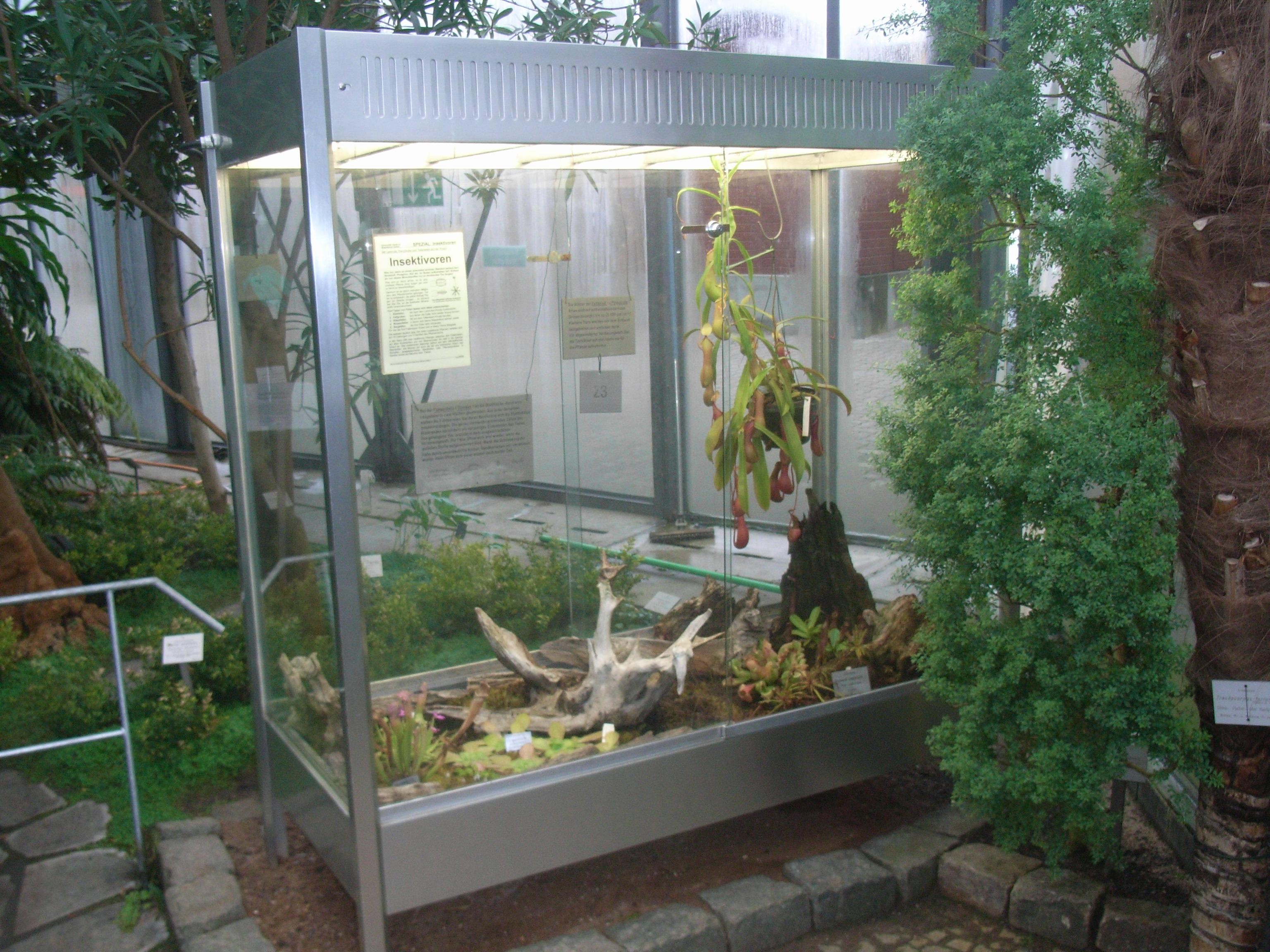 File Alter Botanischer Garten Hamburg Gewachshaus 2 Jpg