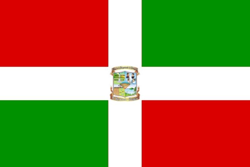 Bandeira de Paraguarí
