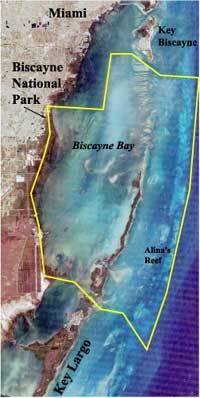 La Baia di Biscayne, in giallo con i limiti del parco nazionale.