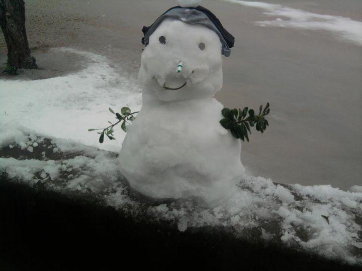 File bonhomme de neige alg - Bonhomme de neige decoration exterieure ...