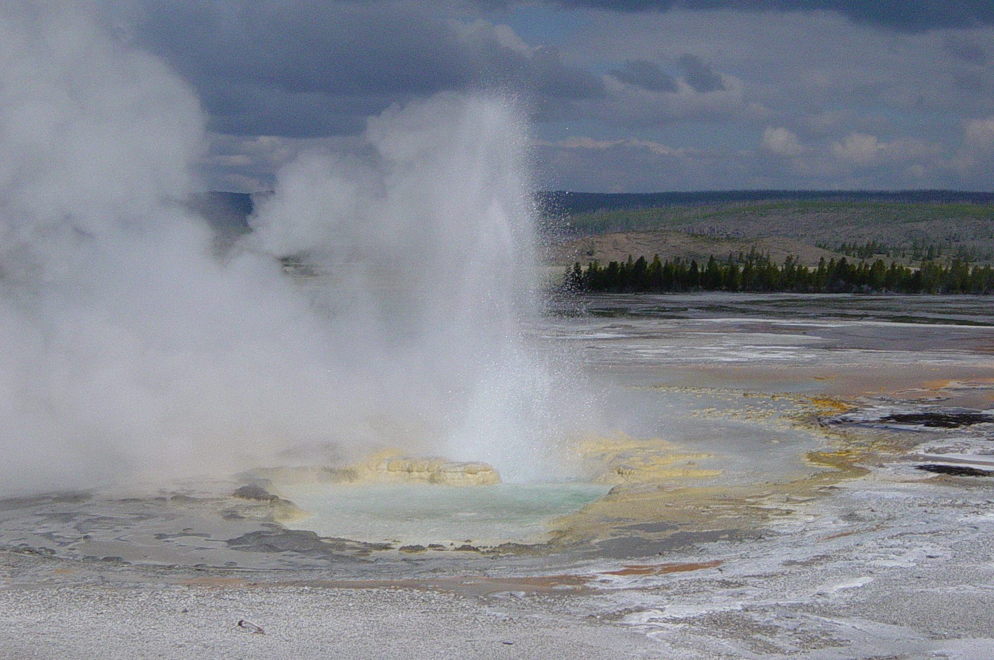 Clepsydra Geyster in Yellowstone National Park.  Photo on Wikimedia Commons by Daniel Mayer
