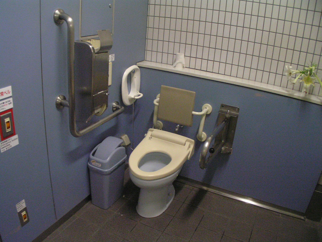 disabled toilet size images frompo