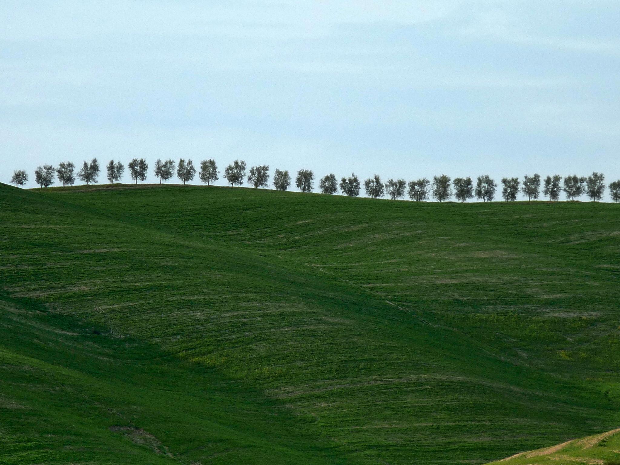 Flickr - lo.tangelini - Los Guardianes de la Tierra.jpg