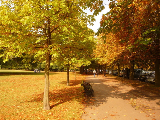 Greenwich, an autumny feel in Greenwich Park - geograph.org.uk - 1498350