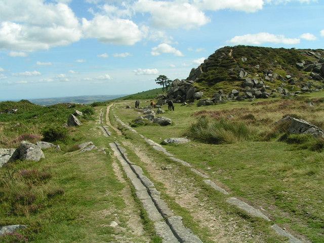 Haytor Granite Tramway - geograph.org.uk - 224171