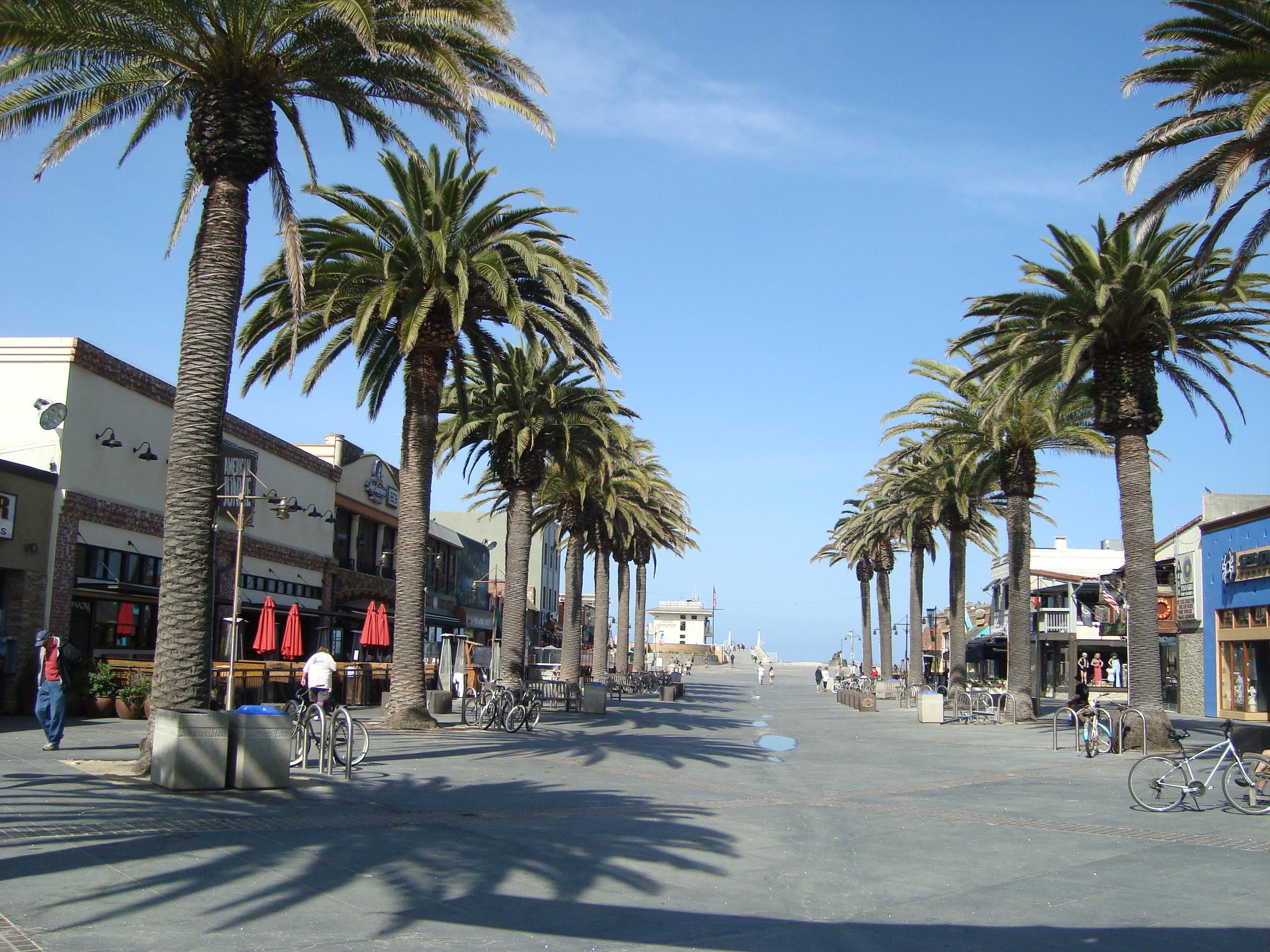 Hermosa Beach City Council