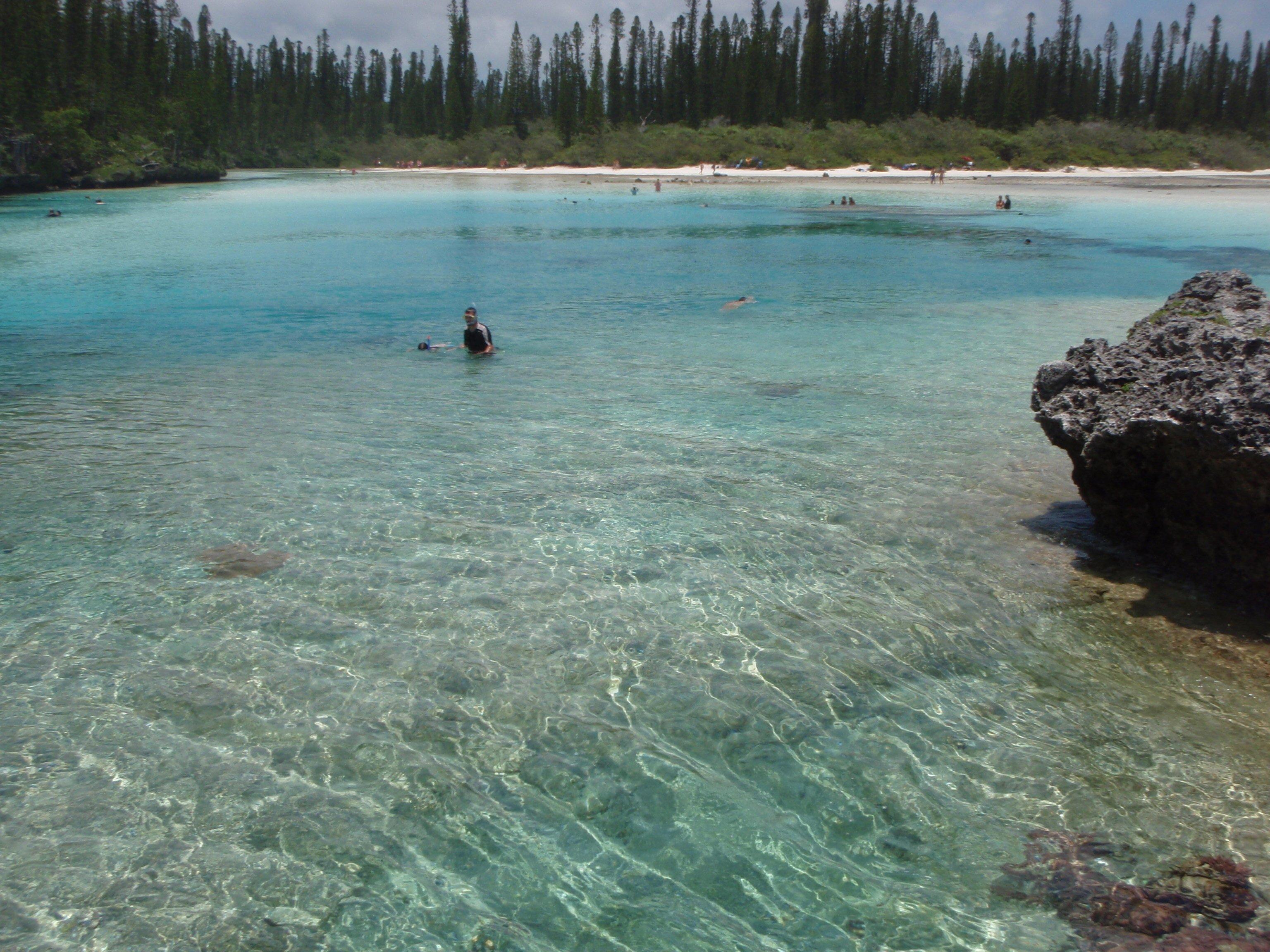 File ile des pins piscine naturelle d 39 oro - Prix d une piscine naturelle ...