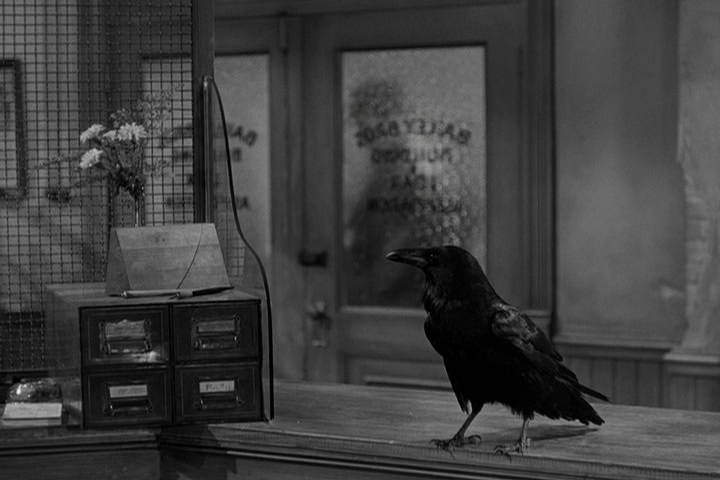 Jimmy The Raven Wikipedia