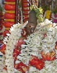 Kutruva Nayanar