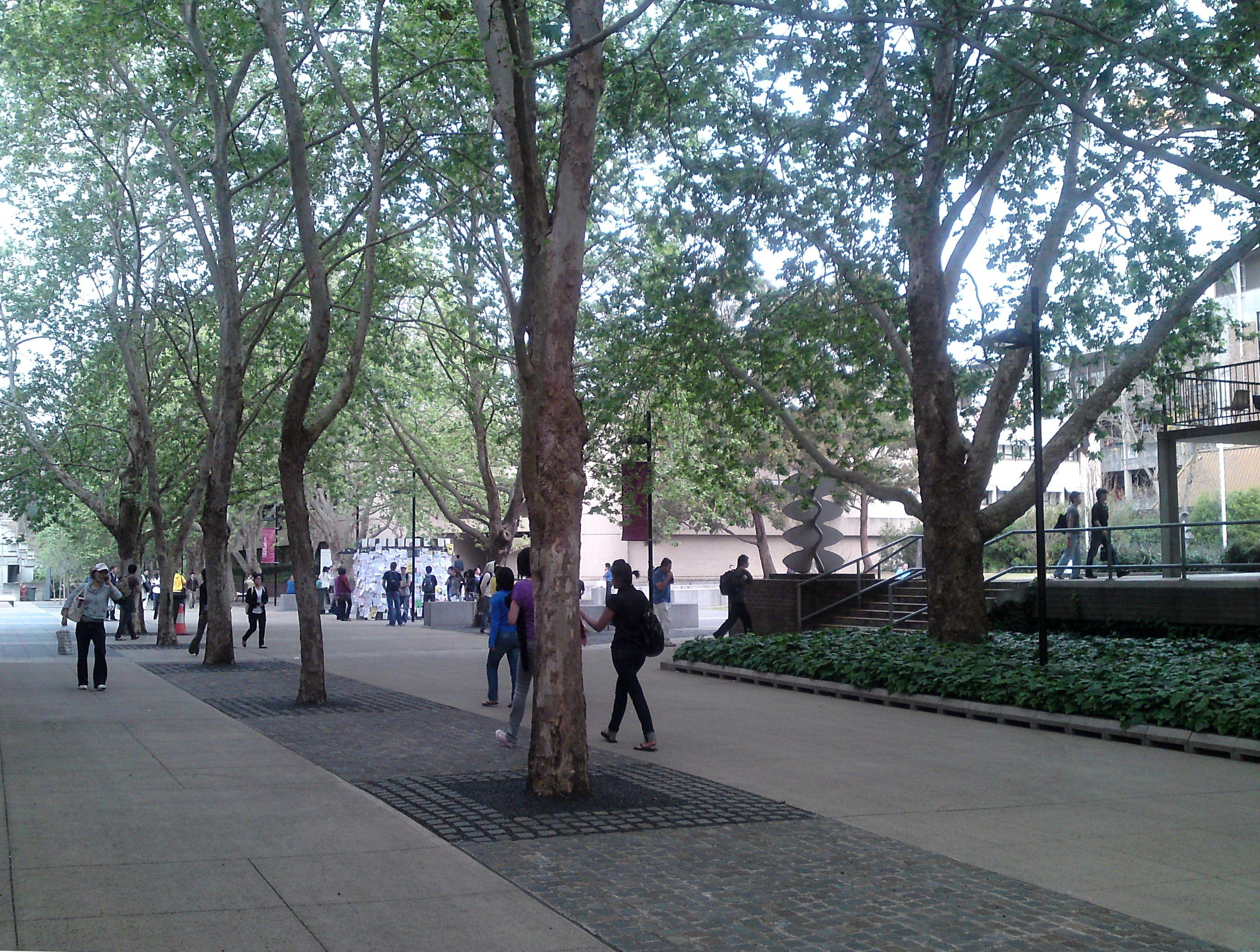 file outside the old library macquarie university jpg wikimedia