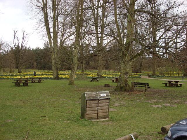 Picnic area, Nowton Park - geograph.org.uk - 734066