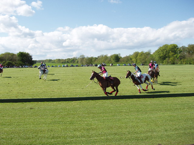 Polo at Cirencester Park - geograph.org.uk - 18944