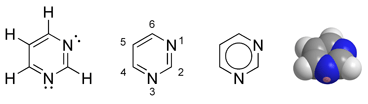 Pyrimidine. Two of the bases found in DNA, cytosine (C) and thymine (T), and a base found only in RNA, uracil (U), are derivatives of pyrimidine.