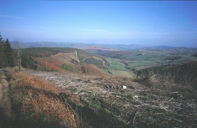 Radnor Forest - geograph.org.uk - 7791