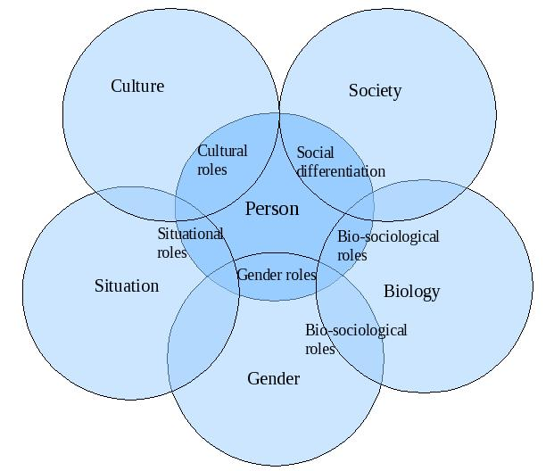Infographic definition of culture in sociology