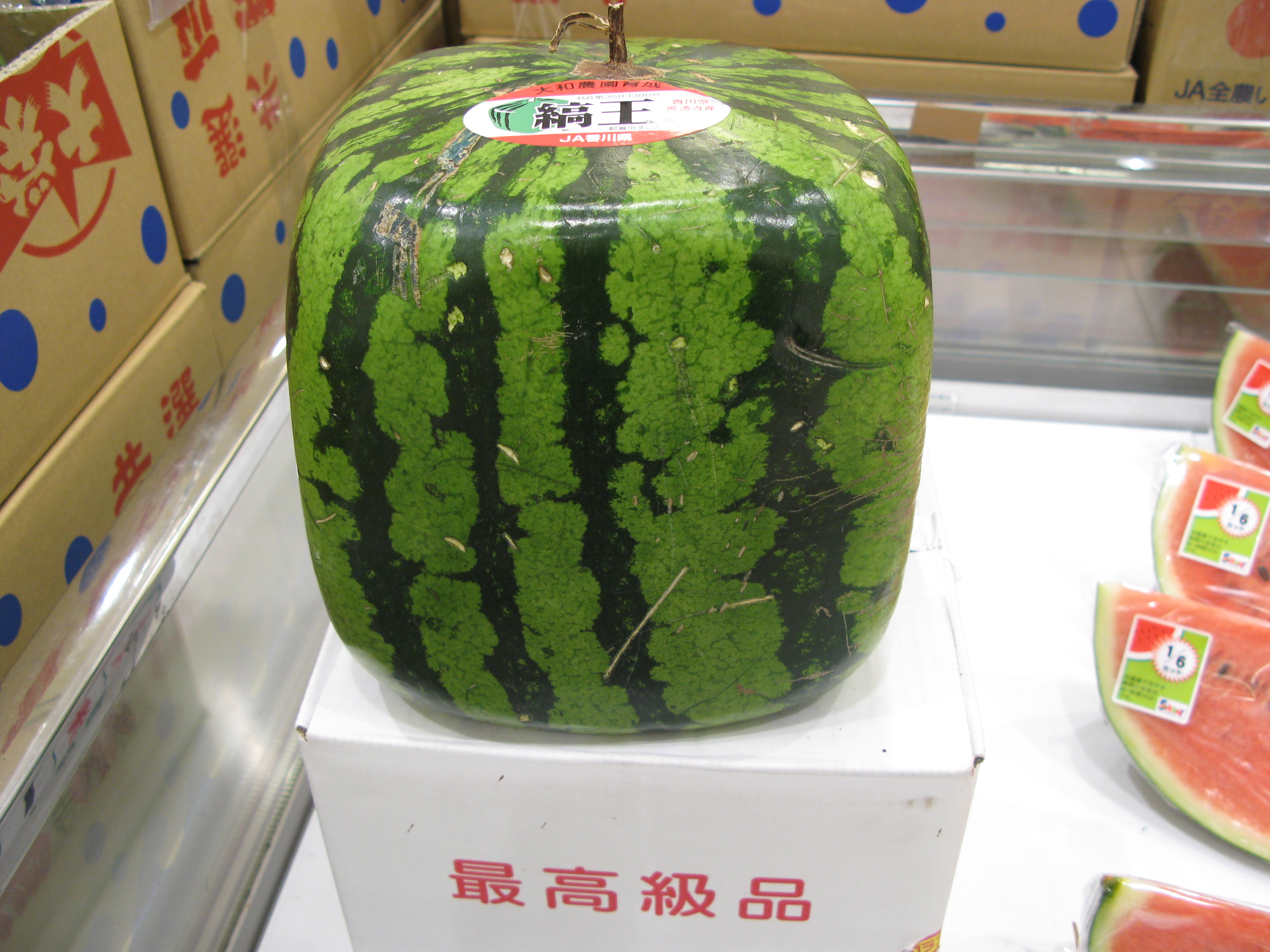 Top 10 facts about watermelon degreed blog - Square watermelons how and why ...