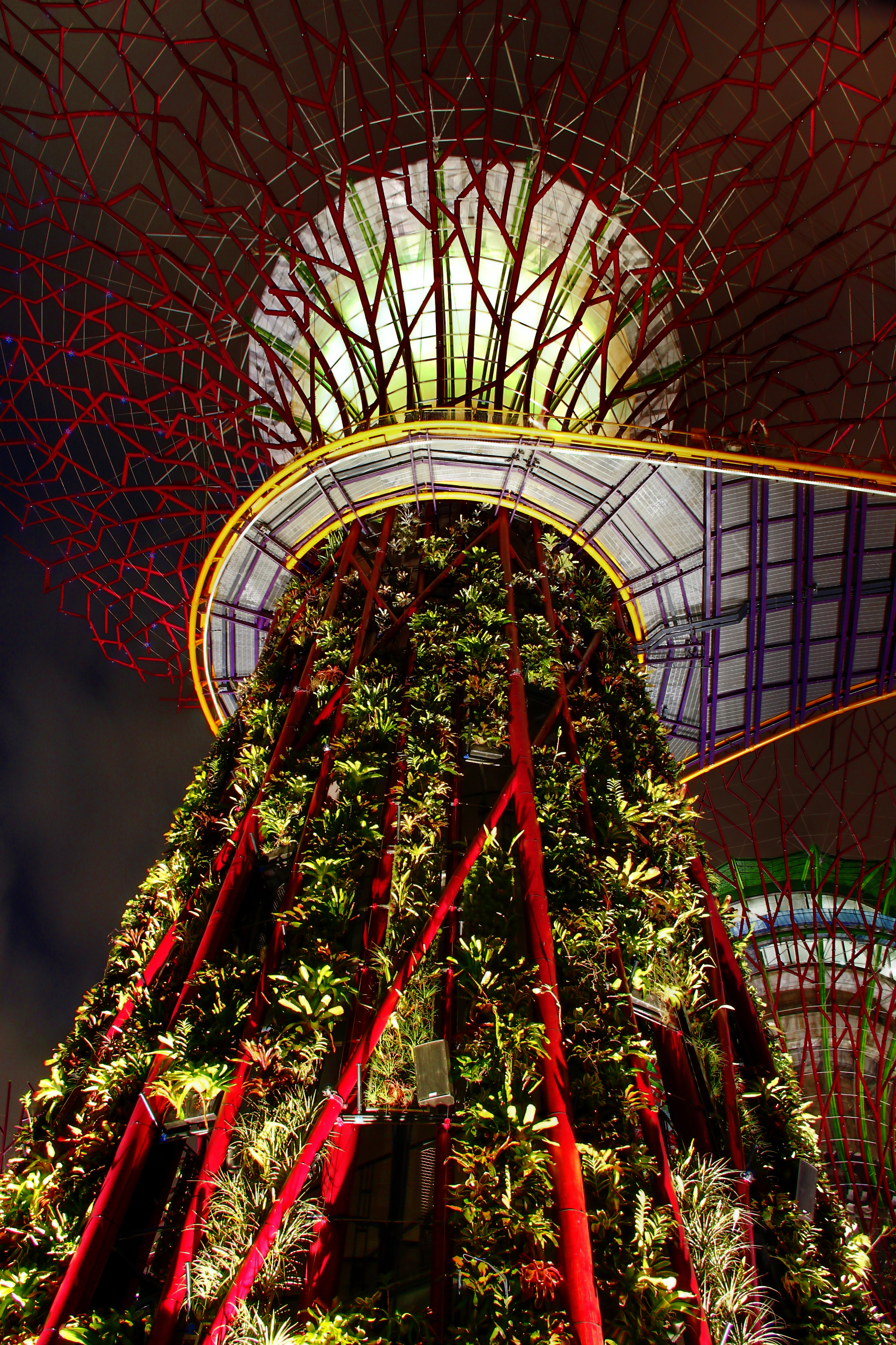File:Supertree Grove, Gardens by the Bay, Singapore - 20120726-03 ...