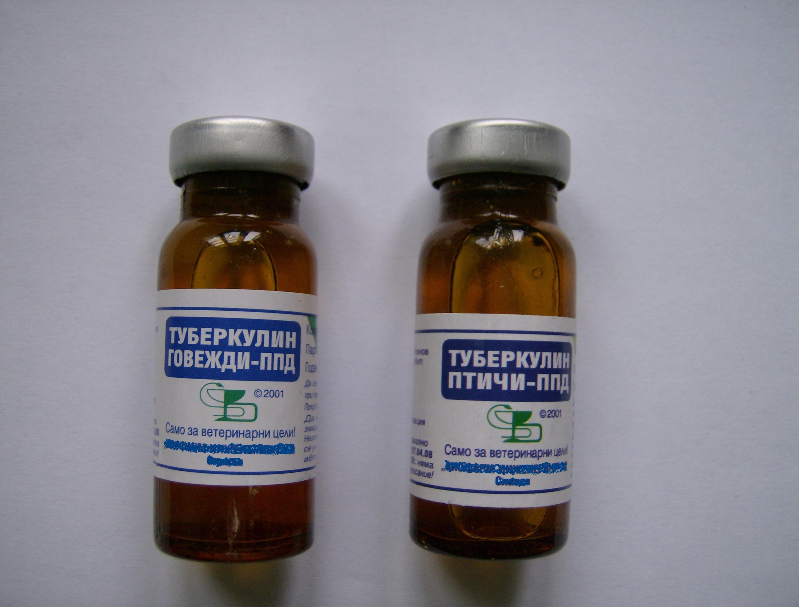 Туберкулин фото