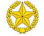 Файл:Пехота и мотострелки.png