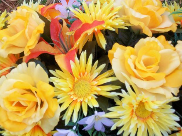https://upload.wikimedia.org/wikipedia/commons/7/7f/1461939_Yellow-silk-flowers_620.jpg