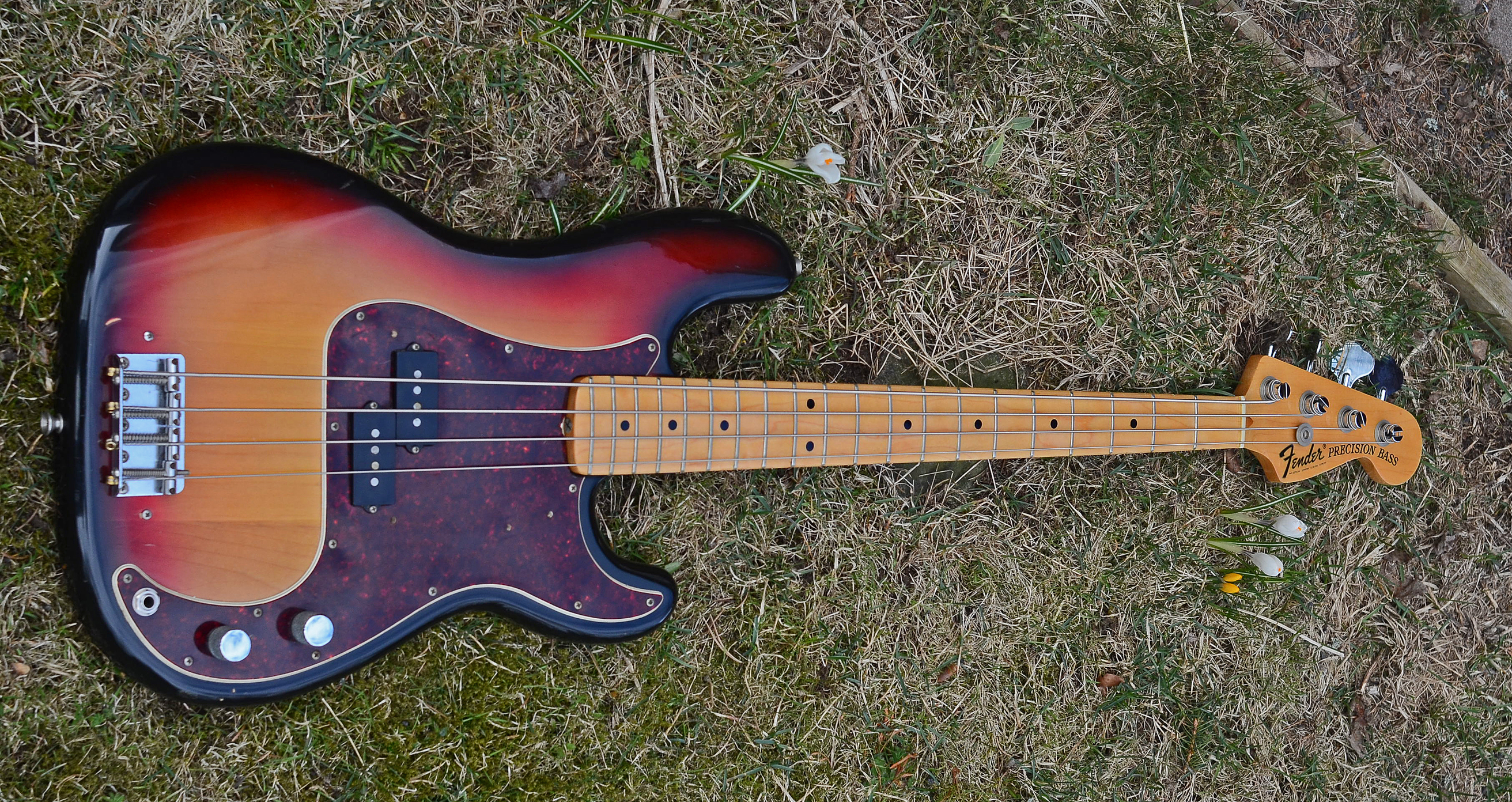 File1973 Fender Precision Bass By Don Wright