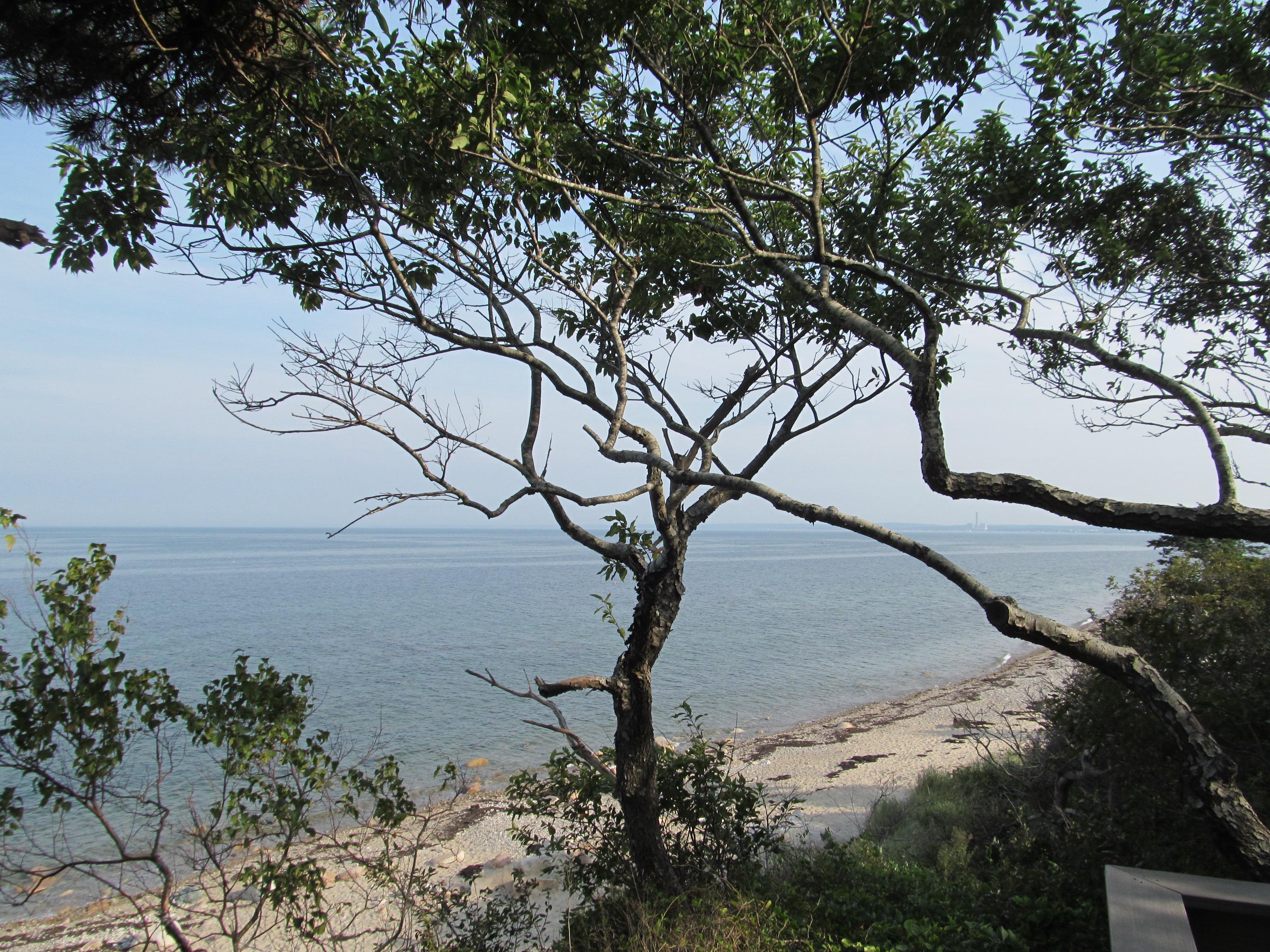 Beach State Park Massachusetts North
