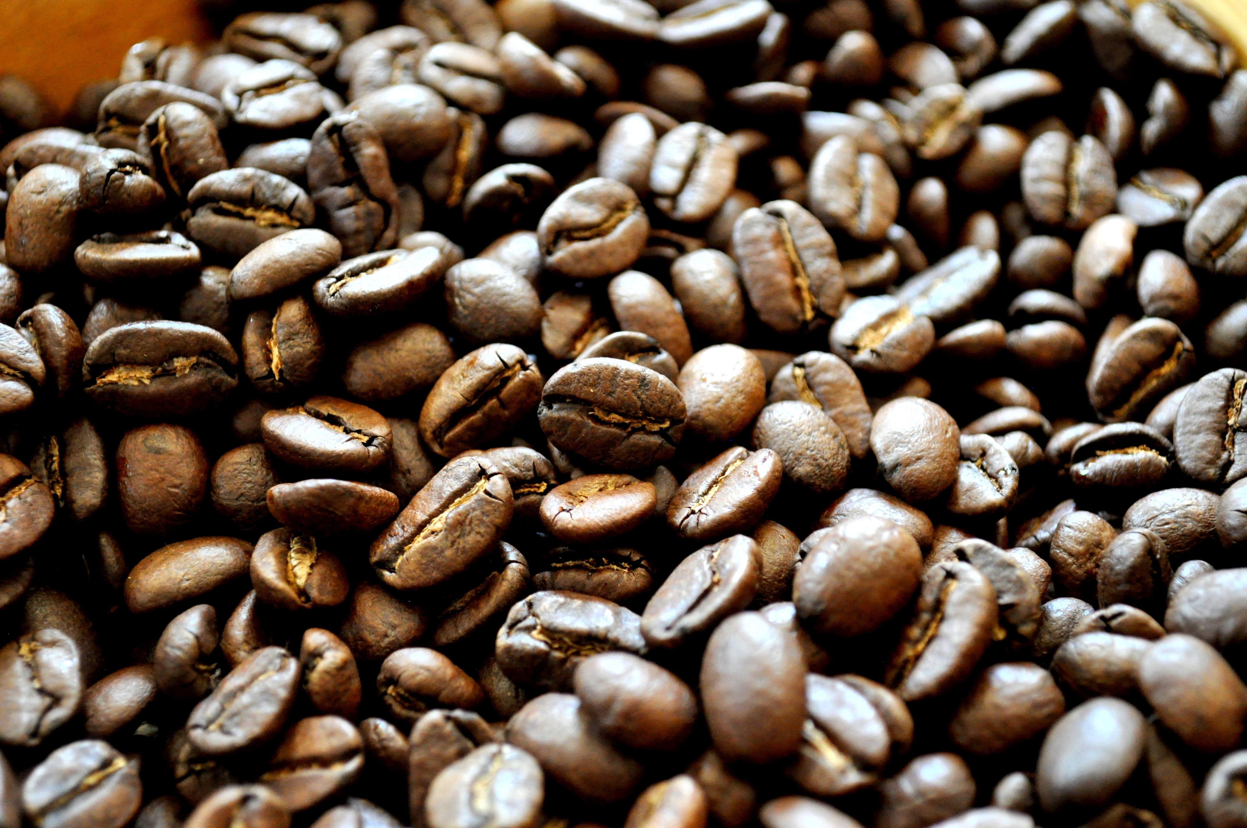Costa Rica Coffee Urban Cafe Buy Online