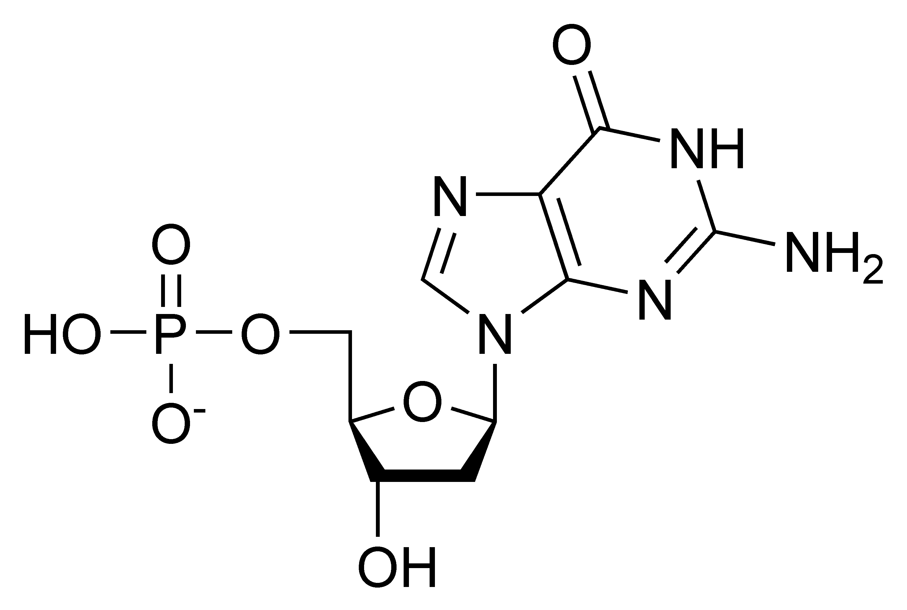 Chemical structure of deoxyguanosine monophosphate