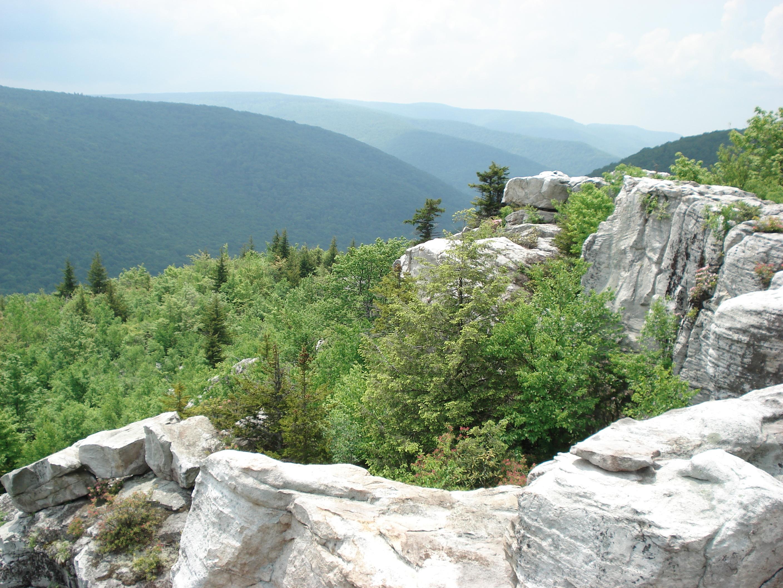Dolly Sods Wilderness - Wikipedia