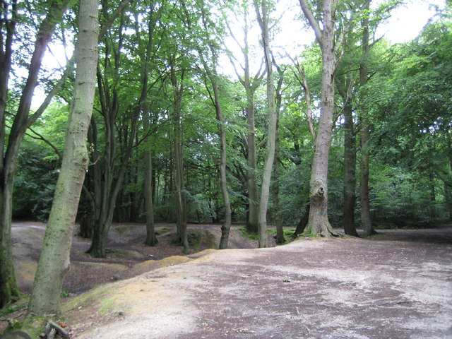Downley Common - geograph.org.uk - 888021