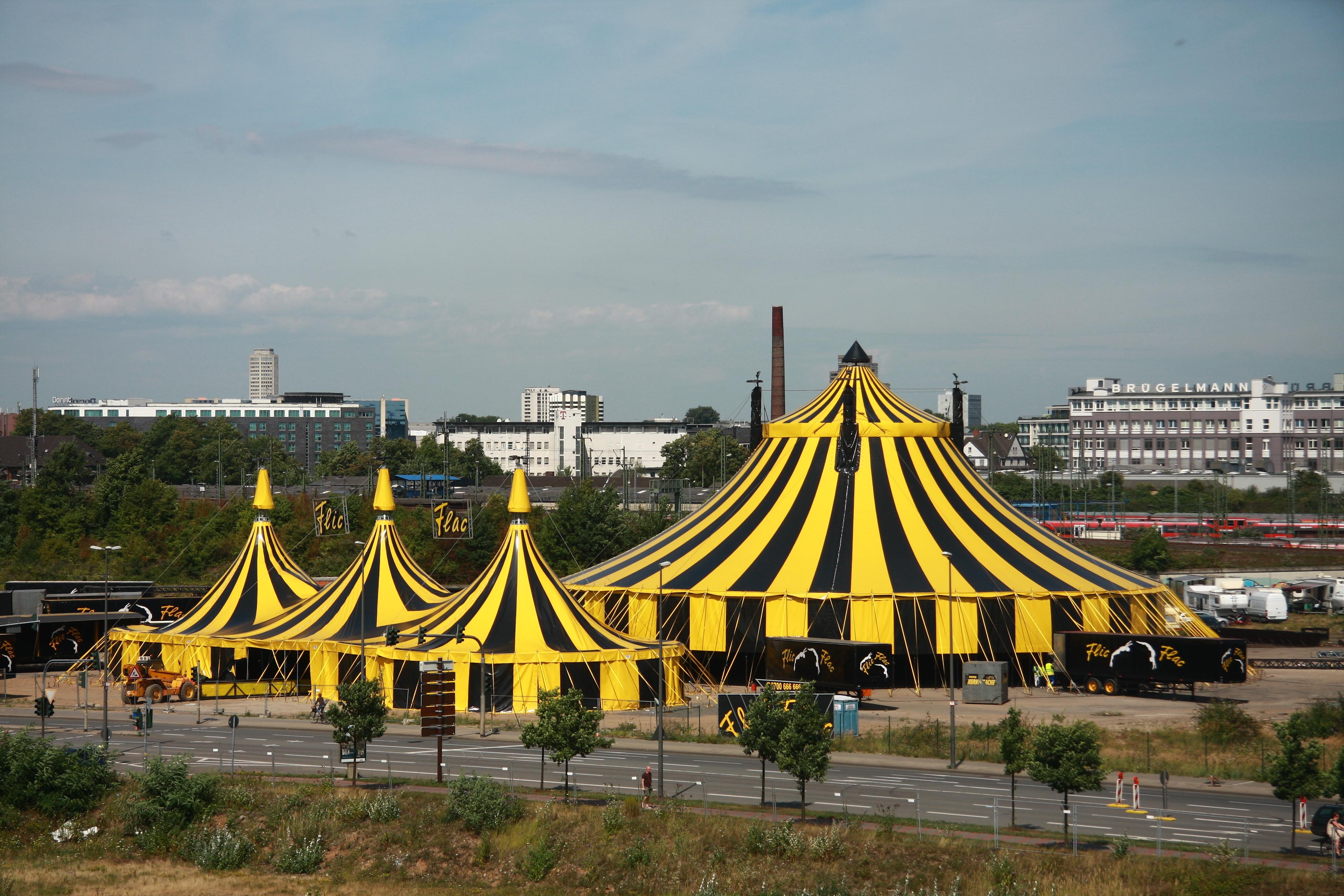 circus flic flac video