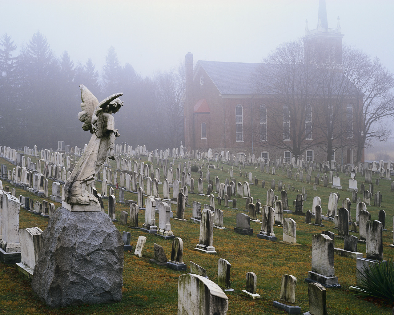 Foggy Graveyard Wallpaper