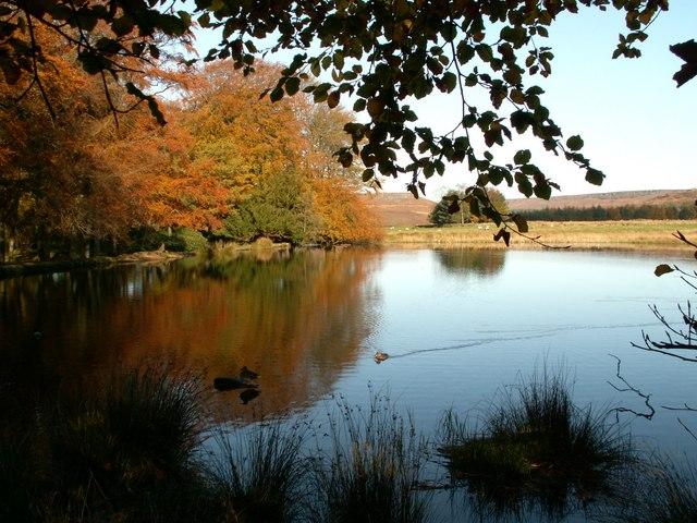Longshaw Lake - geograph.org.uk - 379433