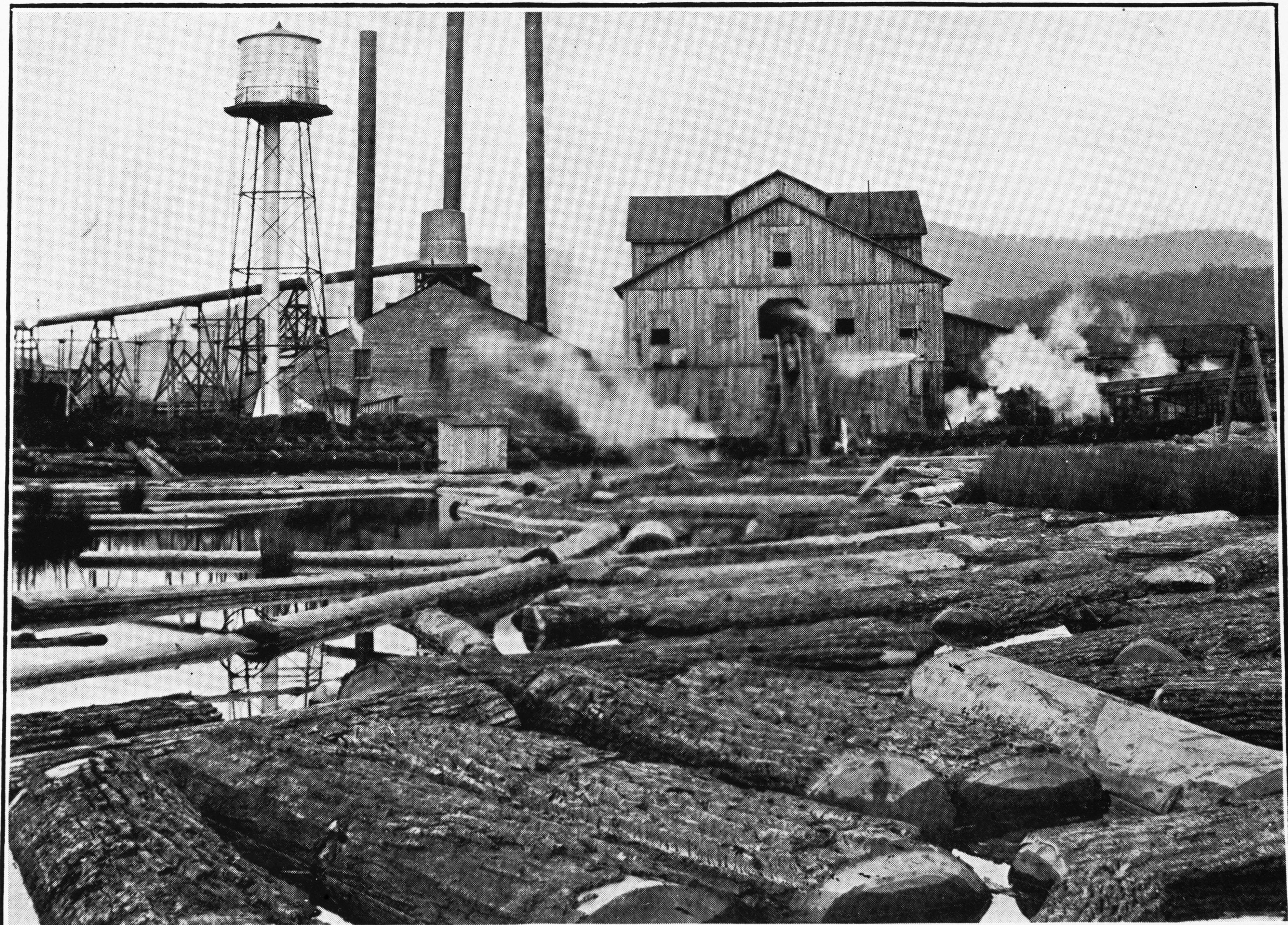 Meadow River Lumber Company - Wikipedia
